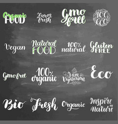 eco concept lettering set on chalkboard background vector image