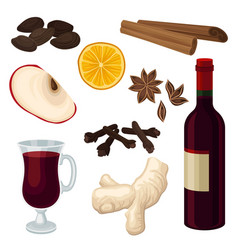 Flat set of ingredients for mulled wine vector