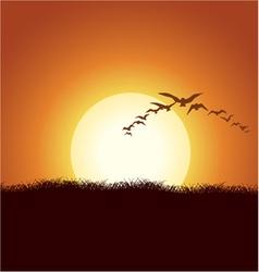 Flock of birds vector