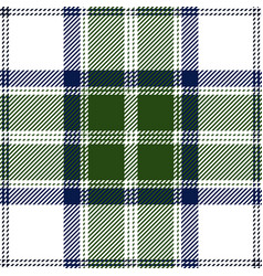 green and white tartan plaid seamless pattern vector image