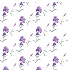 Lavender pattern with flowers in watercolor paint vector