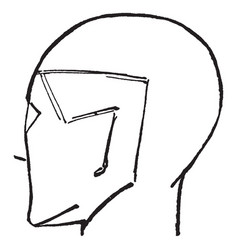 Male head is bald and turned completely vintage vector