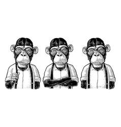 Monkey businessman in shirt and suspender vector