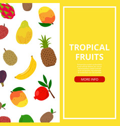 tropical fruits banner vector image