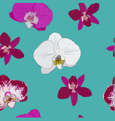 tropical seamless pattern with orchids flowers vector image