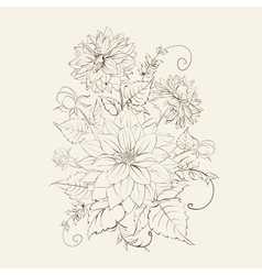 Chrysanthemum isolated design vector image vector image