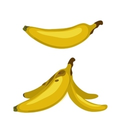 Whole banana and peel two images isolated vector image