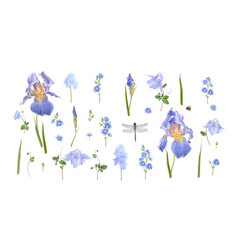 Blue flower set vector