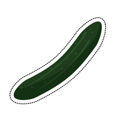 cartoon cucumber vegetable nutrition icon vector image