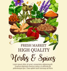 herbs and spices in bowls poster for fresh market vector image