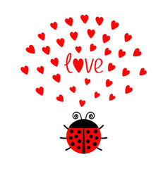 Red round lady bug insect with hearts cute vector