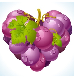 Bunch grapes in shape heart vector