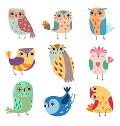 collection of cute owlets colorful adorable owl vector image