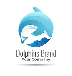 Dolphin logo design template for your business vector