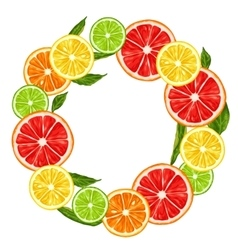 Frame with citrus fruits slices mix lemon lime vector