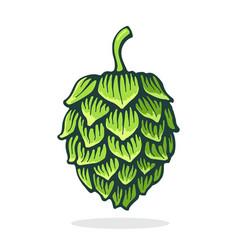 Green cone hop symbol beer pub vector
