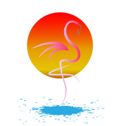 stylish flat design flamingo icon silhouette vector image
