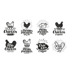 chicken label set food poultry farm meat egg vector image