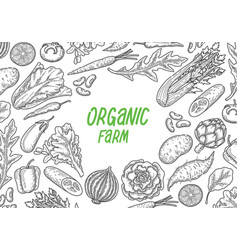 hand draw vegetable vector image