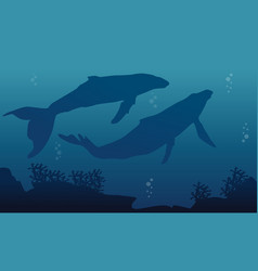 Landscape of two big whale silhouettes vector