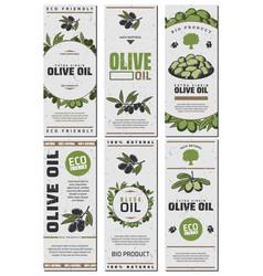 Olive oil packaging templates design set vector