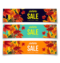 set coupons for autumn sale vector image