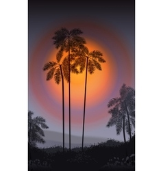 Summer Night Palm trees in the night vector image