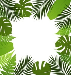 Tropical leaves background Frame with vector image