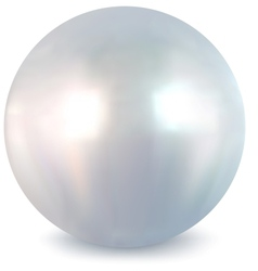 White pearl vector image
