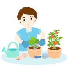 man planting tree cartoon vector image vector image
