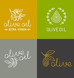 olive oil icons and logos vector image