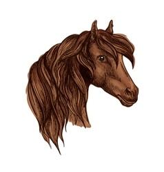 Portrait noble brown horse mare vector