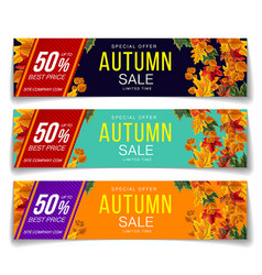 Set of autumn sale coupons vector