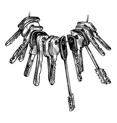 sketch hand drawn bunch of keys on white vector image