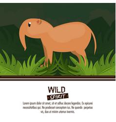 wild spirit animals vector image