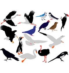 birds vs vector image vector image
