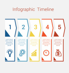 timeline infographic for five position vector image vector image