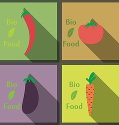 Flat design modern of Healthy and biological Food vector image