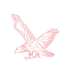 bald eagle with spreaded wings for symbol or logo vector image