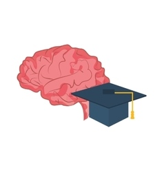 brain and graduation cap icon vector image