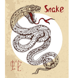 Chinese zodiac symbol etching snake vector
