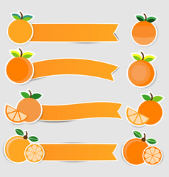 cute orange fruit stickers with ribbon vector image