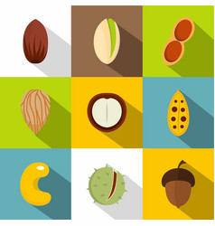 mix of different nuts icons set flat style vector image