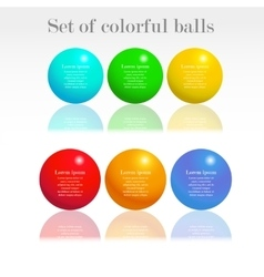 Set of colorful balls vector image vector image