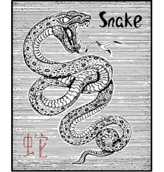 engraved of zodiac symbol with snake vector image