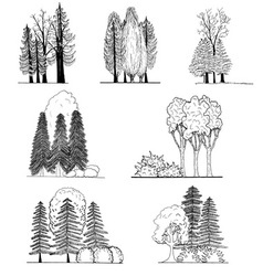 A set of tree silhouettes for architectural or l vector image