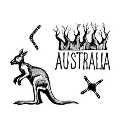 australia symbols and signs vector image vector image