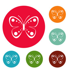 wild butterfly icons circle set vector image