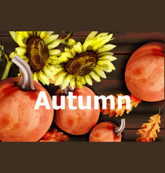 Autumn card with pumpkins and sunflower vector