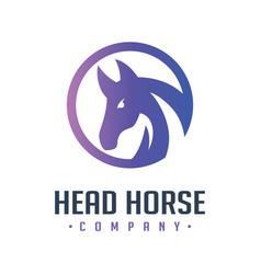 circle head horse logo design vector image
